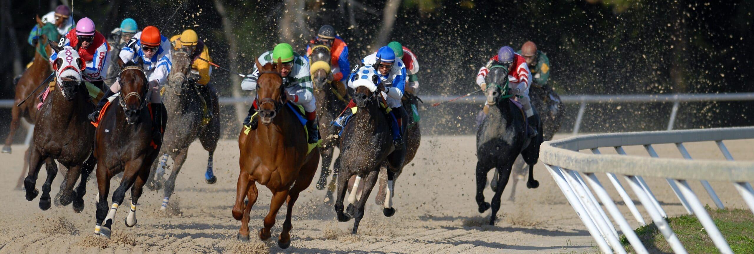 Race horses in full speed