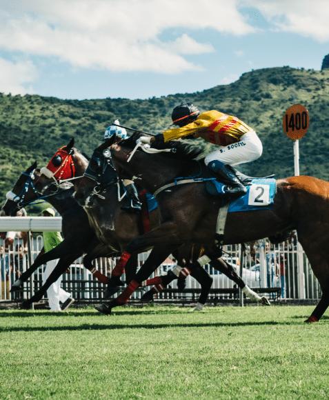 Horse-racing-full-speed