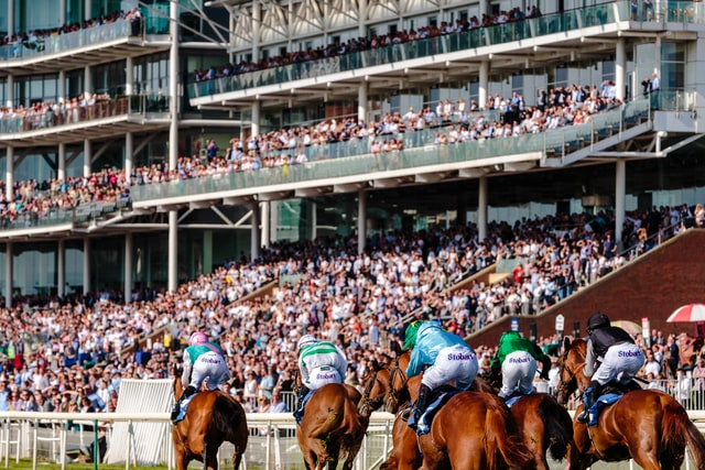 horses preparing to race before full stands